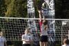 Zawody Orlik Volleymania