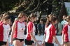 Orlik Volleymania
