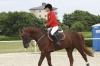 Jaki jest koń każdy widzi