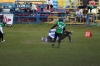 Mecz Sabercats Sopot vs. Werewolves Warsaw